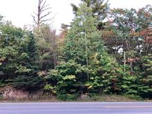Lot for sale in Gore, Laurentides, Route  329, 15207492 - Centris.ca
