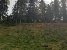 Terrain à vendre à Saint-Aimé-des-Lacs, Capitale-Nationale, Route  138, 21596841 - Centris.ca