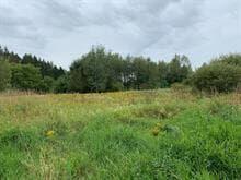 Terrain à vendre à Mandeville, Lanaudière, Rang  Saint-Pierre, 15929509 - Centris.ca