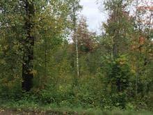 Terrain à vendre à Rock Forest/Saint-Élie/Deauville (Sherbrooke), Estrie, Rue de l'Étang, 14535243 - Centris.ca