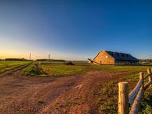 Farm for sale in Desjardins (Lévis), Chaudière-Appalaches, 730, Avenue des Ruisseaux, 10405318 - Centris.ca