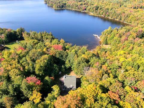 Maison à vendre à Amherst, Laurentides, 180, Chemin du Prospecteur, 12772904 - Centris.ca