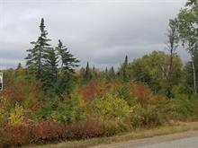 Lot for sale in La Malbaie, Capitale-Nationale, Rang  Saint-Charles, 25103939 - Centris.ca