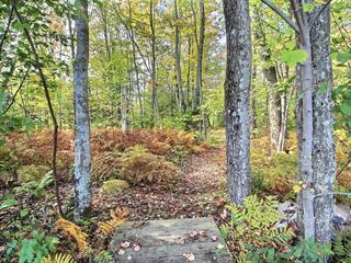Terrain à vendre à Sainte-Marie-de-Blandford, Centre-du-Québec, Rue des Saumons, 12827367 - Centris.ca