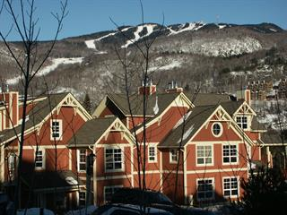 Condo / Apartment for rent in Mont-Tremblant, Laurentides, 219, Chemin des Quatre-Sommets, apt. 1, 23549109 - Centris.ca
