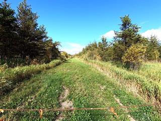 Terre à vendre à La Reine, Abitibi-Témiscamingue, 4e-et-5e Rang, 27314961 - Centris.ca