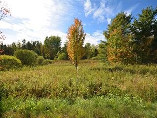 Terrain à vendre à Magog, Estrie, Chemin  Viens, 25186373 - Centris.ca