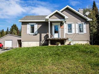 House for sale in Rivière-à-Pierre, Capitale-Nationale, 989, Rue du Lac-Vert, 19175456 - Centris.ca