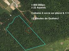 Terre à vendre à Sainte-Catherine-de-la-Jacques-Cartier, Capitale-Nationale, 35, Rue de la Grande-Chevauchée, 19364915 - Centris.ca