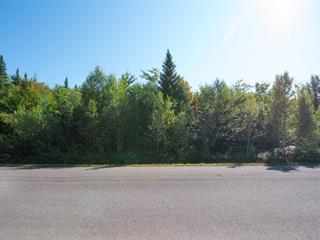Lot for sale in Fossambault-sur-le-Lac, Capitale-Nationale, 37, Rue de la Pointe-aux-Bleuets, 25840471 - Centris.ca