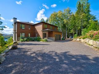 House for sale in Sainte-Agathe-des-Monts, Laurentides, 7, Rue  Félix-Leclerc, 23176145 - Centris.ca