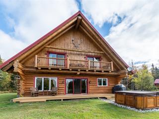 Maison à vendre à Sainte-Christine-d'Auvergne, Capitale-Nationale, 18, Chemin du Héron, 25366421 - Centris.ca