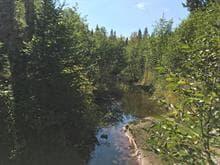 Terrain à vendre à Saint-Donat (Lanaudière), Lanaudière, Route  329, 20899963 - Centris.ca
