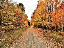 Terrain à vendre à Chertsey, Lanaudière, Chemin de Chertsey, 28678719 - Centris.ca