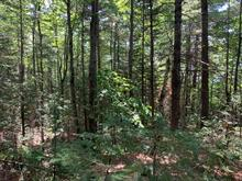 Lot for sale in Rawdon, Lanaudière, Chemin du Lac-Gratten, 16325198 - Centris.ca
