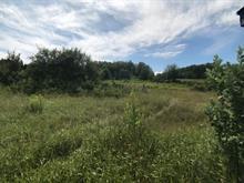 Terre à vendre à Saint-Aimé-des-Lacs, Capitale-Nationale, 251Z, Rue  Principale, 17455722 - Centris.ca