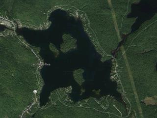 Lot for sale in Saint-Raymond, Capitale-Nationale, Chemin du Lac-Sept-Îles, 24903234 - Centris.ca