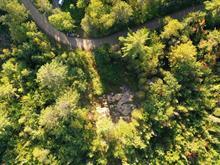 Terrain à vendre à Saint-Damien, Lanaudière, Chemin du Crique-à-David Est, 11882739 - Centris.ca