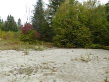Land for sale in Shipshaw (Saguenay), Saguenay/Lac-Saint-Jean, Route  Saint-Léonard, 21967125 - Centris.ca