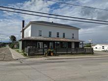 Bâtisse commerciale à vendre à Saint-Pamphile, Chaudière-Appalaches, 231, Rue  Principale, 28141088 - Centris.ca