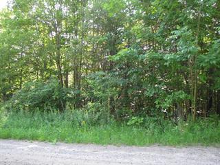 Terrain à vendre à Saint-Gabriel, Lanaudière, Rue  Beauvilliers, 11620085 - Centris.ca