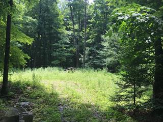 Terrain à vendre à Brownsburg-Chatham, Laurentides, Rue du Lac-Martinez, 20652964 - Centris.ca