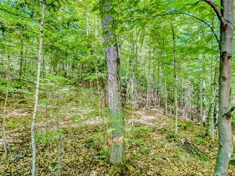 Lot for sale in Cantley, Outaouais, Rue de la Sierra-Nevada, 10150837 - Centris.ca