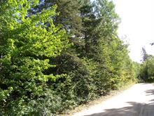 Terrain à vendre à Saint-Alphonse-Rodriguez, Lanaudière, Rue  Dontigny Nord, 21173763 - Centris.ca