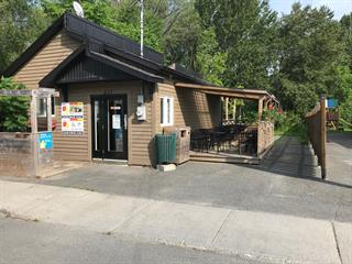 Bâtisse commerciale à vendre à Thetford Mines, Chaudière-Appalaches, 425, Rue  Labbé, 26069376 - Centris.ca