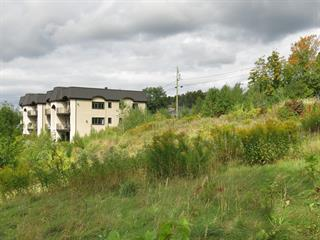 Lot for sale in Sainte-Marie, Chaudière-Appalaches, 725, Avenue  Saint-Alfred, 21558086 - Centris.ca