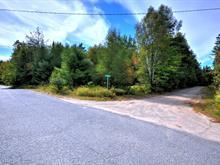 Terrain à vendre à Chertsey, Lanaudière, Chemin des Monts, 25606290 - Centris.ca