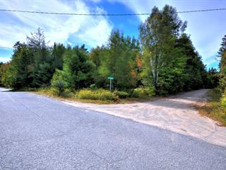 Lot for sale in Chertsey, Lanaudière, Chemin des Monts, 25606290 - Centris.ca