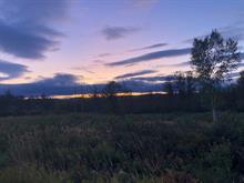Terrain à vendre à New Richmond, Gaspésie/Îles-de-la-Madeleine, Chemin  Campbell, 21776727 - Centris.ca