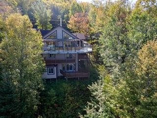 House for sale in Saint-Sauveur, Laurentides, 138, Chemin de la Poutrelle, 24606152 - Centris.ca