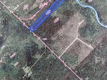 Terre à vendre à Cap-Saint-Ignace, Chaudière-Appalaches, Route de l'Espérance, 15141072 - Centris.ca
