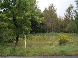 Lot for sale in Weedon, Estrie, 215, 6e Avenue, 27637181 - Centris.ca