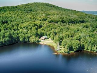 House for sale in Duhamel, Outaouais, 132, Chemin du Lac-Venne Sud, 12666013 - Centris.ca