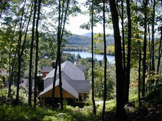 House for rent in Mont-Tremblant, Laurentides, 166, Chemin de la Falaise, 22285862 - Centris.ca