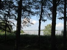 Lot for sale in Macamic, Abitibi-Témiscamingue, 1571, Route  111 Ouest, 23780205 - Centris.ca