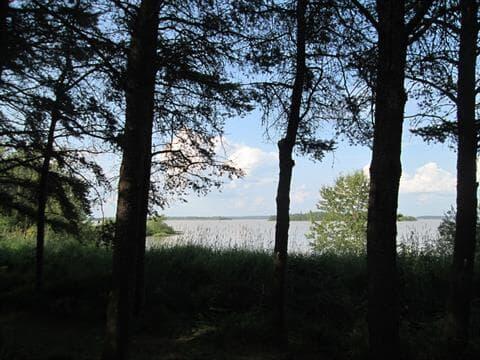 Terrain à vendre à Macamic, Abitibi-Témiscamingue, 1571, Route  111 Ouest, 23780205 - Centris.ca