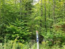 Terrain à vendre à Sainte-Julienne, Lanaudière, Chemin des Amis, 13697578 - Centris.ca