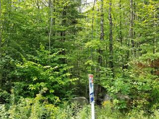 Lot for sale in Sainte-Julienne, Lanaudière, Chemin des Amis, 13697578 - Centris.ca