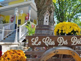 Bâtisse commerciale à vendre à Saint-Donat (Lanaudière), Lanaudière, 515, Rue  Principale, 19070414 - Centris.ca