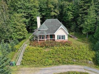 Maison à vendre à Mont-Tremblant, Laurentides, 1621, Chemin du Village, 23765780 - Centris.ca