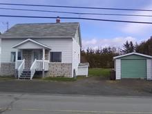 Maison à vendre à Saint-Fabien, Bas-Saint-Laurent, 141, 1re Rue, 24214396 - Centris.ca