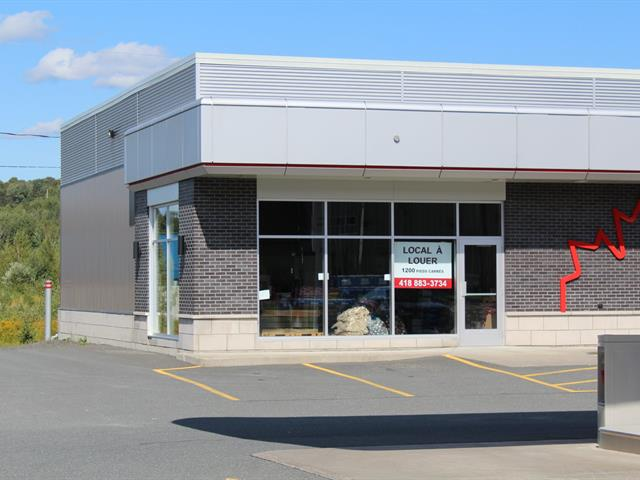 Commercial unit for rent in Sainte-Claire, Chaudière-Appalaches, 205, Route  Bégin, 16110825 - Centris.ca
