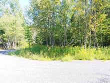 Terrain à vendre à Wentworth-Nord, Laurentides, Chemin  Lanthier, 19732976 - Centris.ca