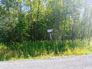 Lot for sale in Wentworth-Nord, Laurentides, Chemin  Lanthier, 19732976 - Centris.ca