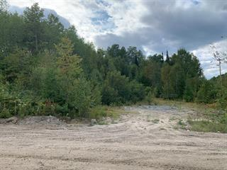 Terrain à vendre à Mont-Laurier, Laurentides, Chemin de la Croix, 12423989 - Centris.ca