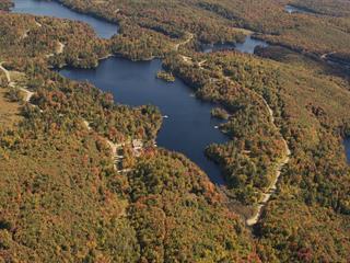Terre à vendre à Wentworth-Nord, Laurentides, Chemin  Saint-Cyr Sud, 27319263 - Centris.ca